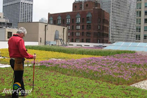 ROOFTech 2015 - How to Detect Membrane Leaks on Green Roofs Before They Become Nightmares with ILD Membrane Integrity Testing