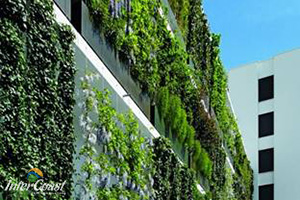 DecorCable Green Wall Systems Division 7, 8, 9 Garden Walls | InterCoast Building Solutions BC AB