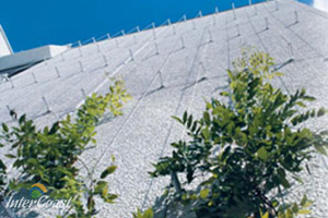 Decorcable Cable Systems for Green Walls & Vertical Landscaping