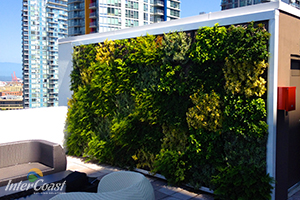 Evergreen green wall systems for vertical plantscapes for Green wall vancouver